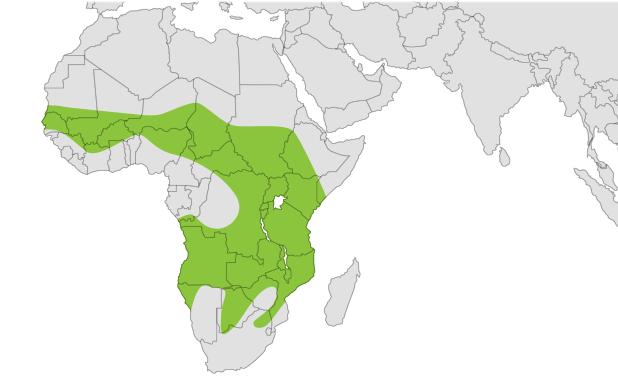 Map of African Lion Habitat