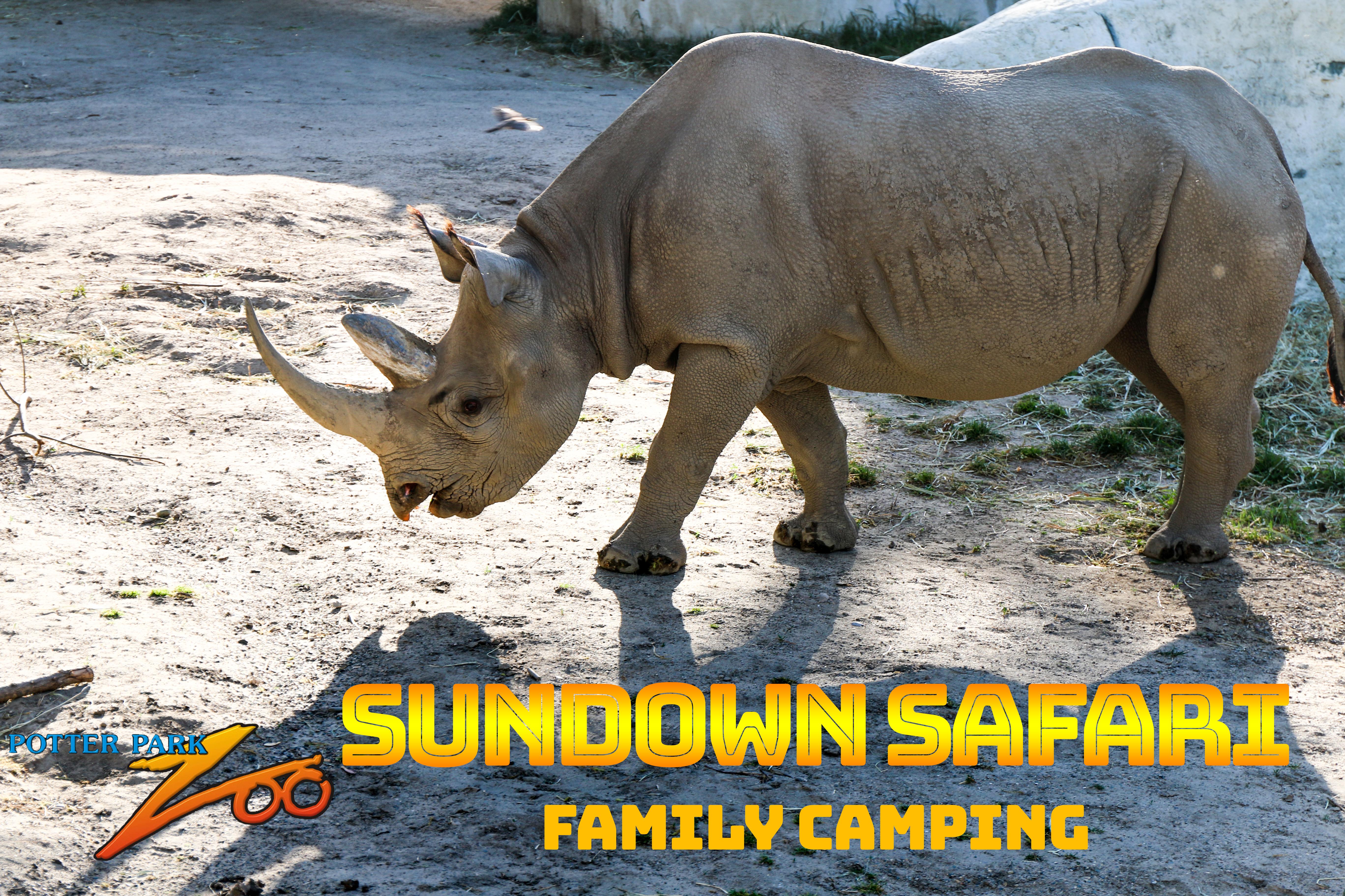 Sundown Safari banner
