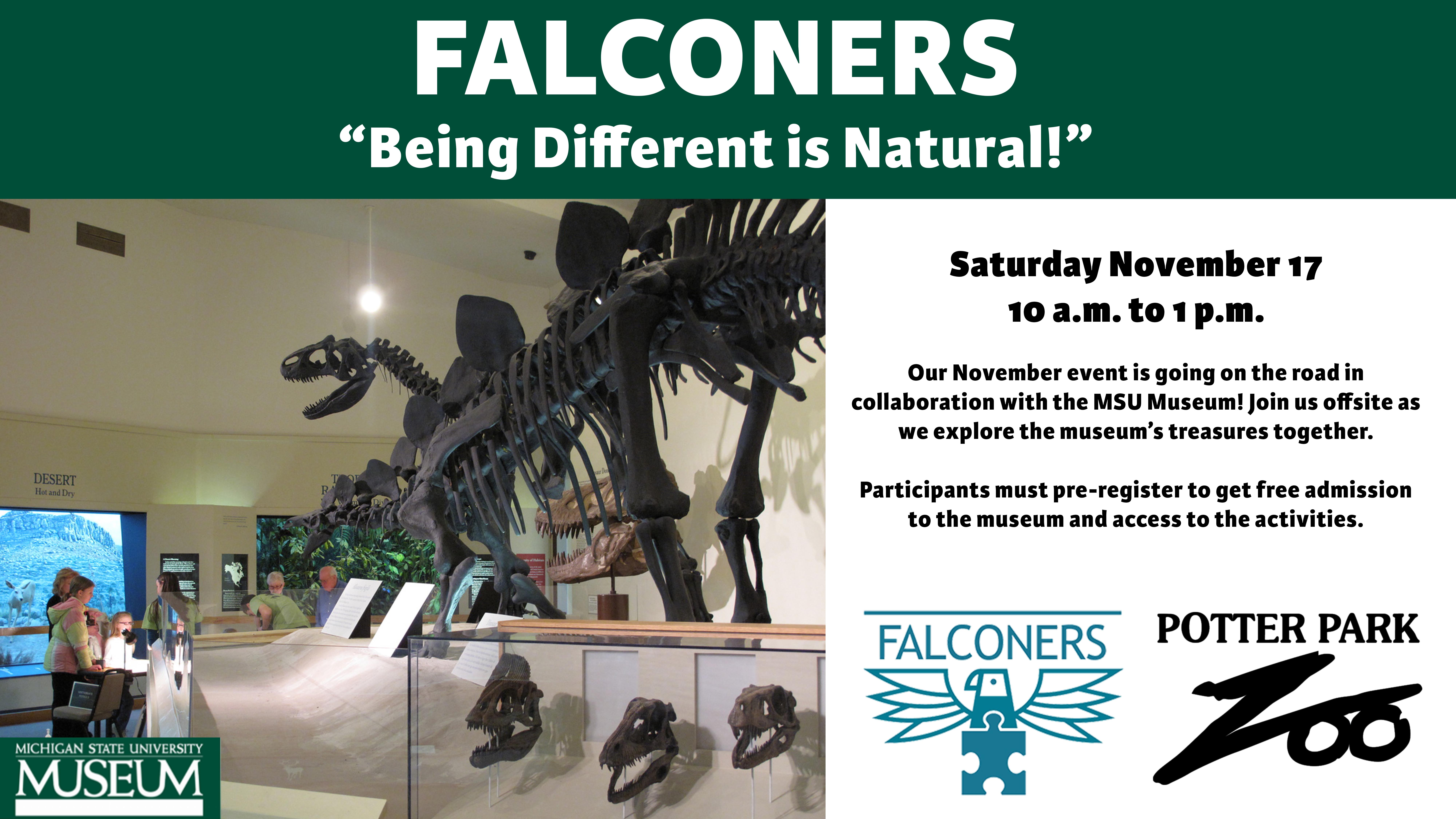 """Falconers """"Being Different is Natural"""""""