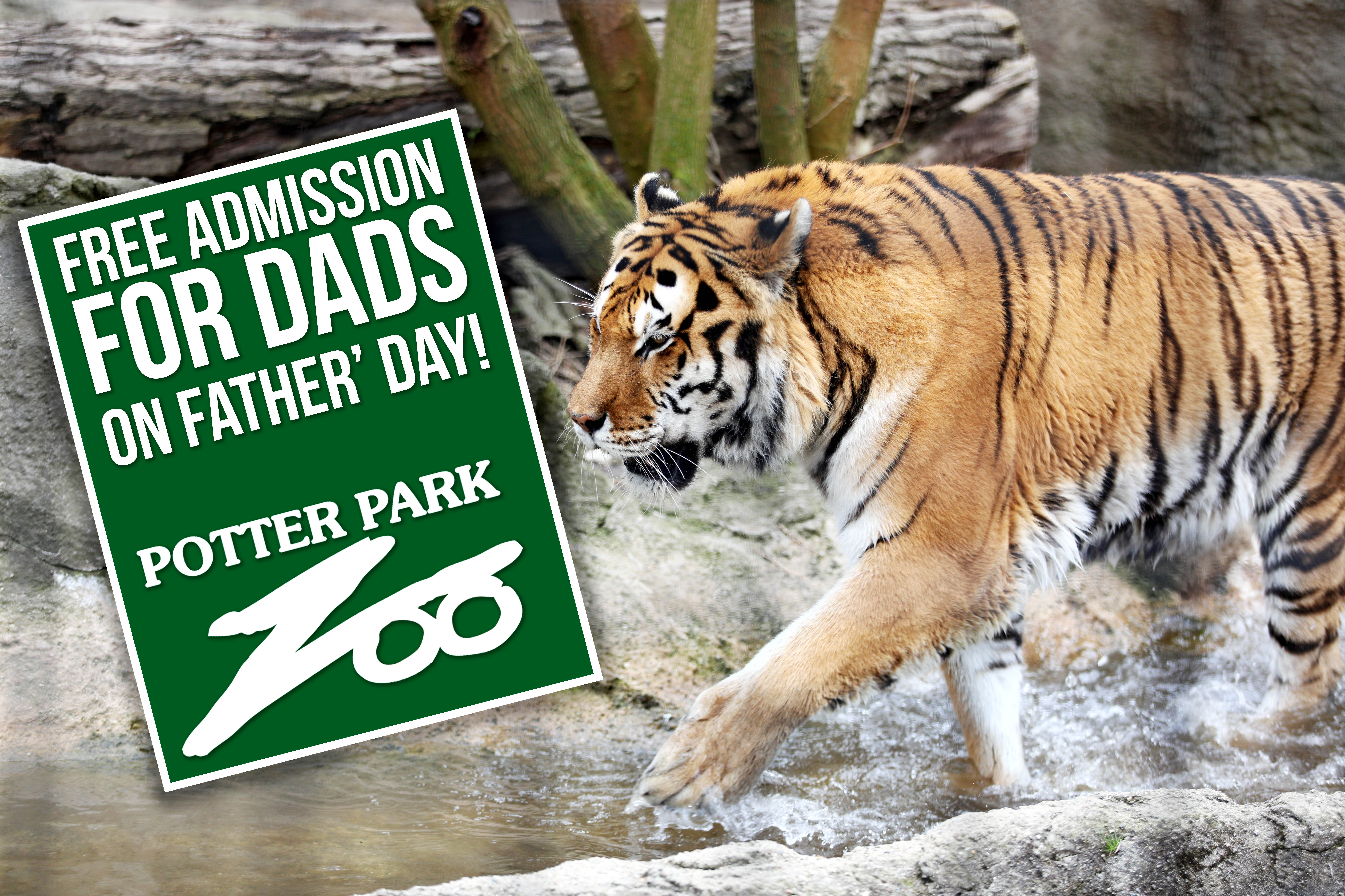 Free Admission for Dads banner