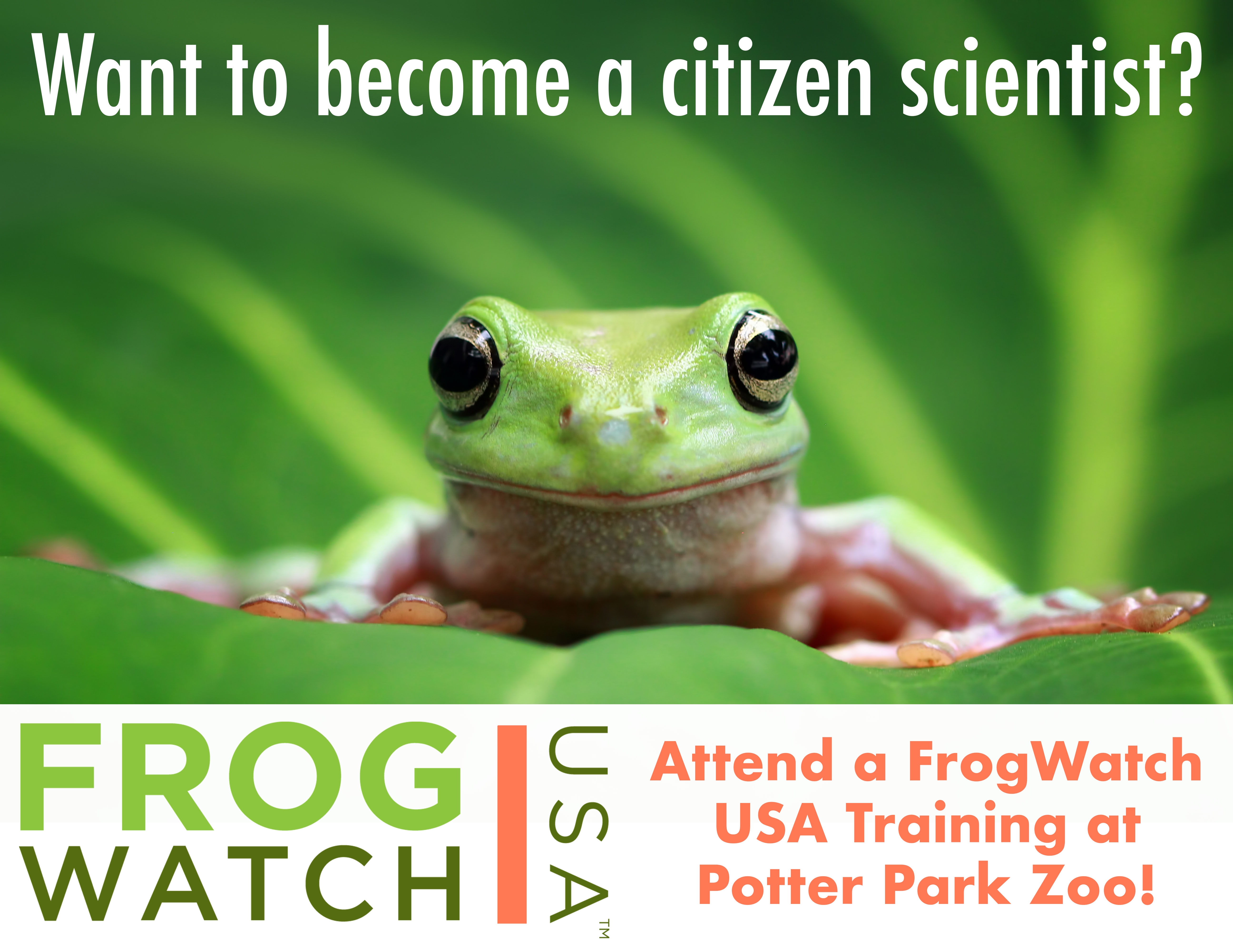 Frog Watch USA banner