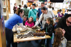 Families enjoying animal hide exhibit at Boo at the Zoo