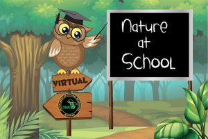 MIDNR Nature at School